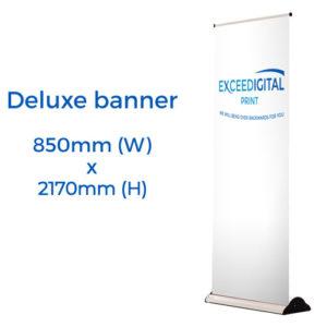 exceedigital-deluxe-banner_size